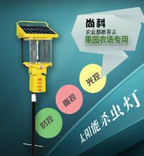 苏州尚科太阳能户外杀虫灯,频振式灭虫灯,田园杀虫灯TFS10图片