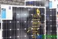佛山德九--珠三角地区光伏组件单晶硅太阳能电池板260WDJ-005