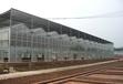 江蘇中空陽光板用于車棚雨棚溫室大棚現貨供應當天發貨