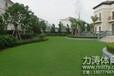 广西庭院专用人造草坪,优质人造草坪,环保实惠,专业团队生产,值得信赖!