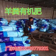 招商羊粪有机肥,发酵羊粪有机肥,河北旺润农业科技,来电有优惠