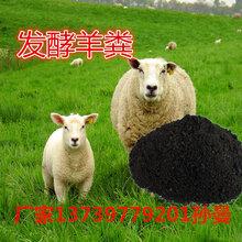 衡水发酵羊粪有机肥价格,大量批发羊粪有机肥,河北旺润肥业