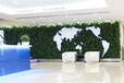 植物墙,仿真植物