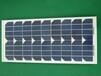 鑫泰莱厂家供应100W多晶硅太阳能电池板质优价廉发货快