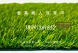 西安人造草坪价格,人造草坪厂家,幼儿园人工草皮