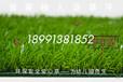 西安人工草皮,幼儿园假草皮,仿真幼儿园草坪