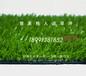 重庆人造草坪,重庆每平方米人造草坪价格