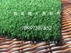 仿真草坪,装饰草皮,西安假草皮,装饰草坪