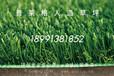 人造草坪一平方多少钱_普莱格幼儿园人造草坪厂家