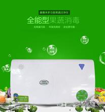康惠来多功能果蔬洁净仪活氧洗菜机家用果蔬解毒机评点礼品图片