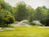 园林绿化、小区绿化、喷灌工程、立体绿化