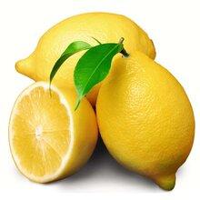康柠源一级黄柠檬产地直销图片