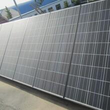 光伏并网用250w,260w/24v太阳能电池板