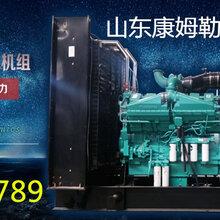 天津柴油发电机组厂家直销天津塘沽发电机组供应