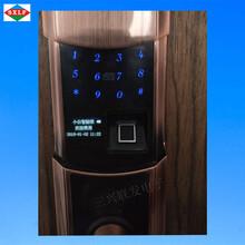 APP智能门锁手机遥控门锁图片