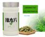 纯植物提取精华促进人体免疫生长-辣木压片糖果OEM代加工