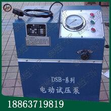 甘肅生產6DSB箱式電動試壓泵電動消防管道試壓泵價格低產品好圖片