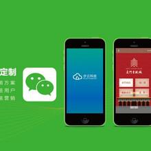 深圳微信公众开发公司,深圳微信代运营公司