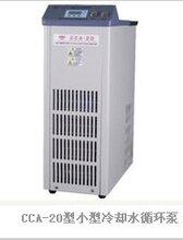 巩义予华仪器小型冷却液循环泵CCA-20无污染,耐腐蚀图片