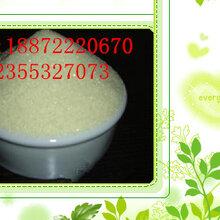 武汉南京厂家直销质优价廉兽药级99.2%盐酸诺氟沙星