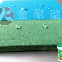 广州防水建材JS黑豹聚合物水泥基防水涂料图片