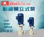 东莞立式排污泵厂家国宝硫酸循环处理泵绝对好品质