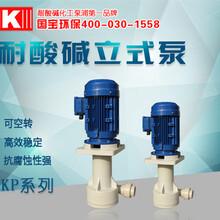 专业抗腐立式泵技术国宝硫酸循环处理泵畅销品牌