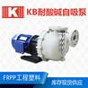 0.75KW稀酸废水输送泵专业工程师为您选型