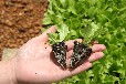 吉林农业固体水高分子吸水剂厂家销售