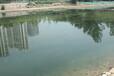 遼寧重金屬污染水體河道底泥修復技術方法