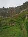 貴州巖石邊坡修復噴播綠化技術土壤團粒劑