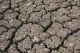 遼寧水土流失治理綠化工程土壤改良劑