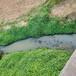 河北污染河道治理工程底泥重金屬捕集劑