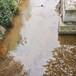 上海城市河道修復重金屬底泥固化劑