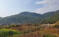 青海法国爱森边坡绿化A30粘合剂