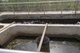 天津河道黑臭水體生態修復工程技術