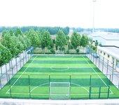 户外路径体育器材、笼式足球场