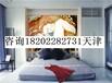 天津彩绘墙画装饰艺术家