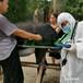 福榮萊母驢懷孕測孕器,迷你福榮萊驢用B超機C60安全可靠