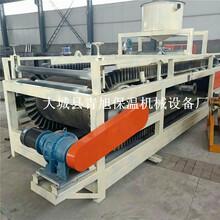 A级无机渗透板设备改性硅质聚苯板设备图片