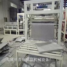 模方匀质板设备大坨子生产工艺,水泥基匀质板设备切割锯设计图图片