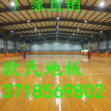 枫木体育地板枫木运动地板体育运动地板实木运动地板图片