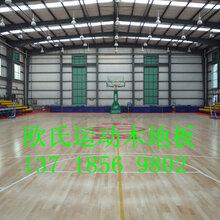 常州体育馆木地板实木运动地板体育运动地板篮球运动地板厂家直销地板