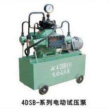 供应4DSB系列电动试压泵图片