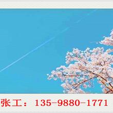 和静县写可行性报告公司地址-和静县可行分析报告图片