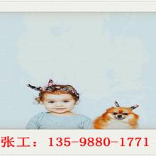 沂源县写可行性报告公司地址-沂源县可行分析报告图片