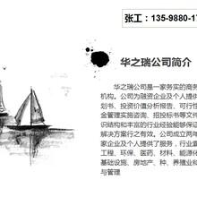 上林县写立项报告本地公司-上林县脸色越来越黑项目立项申请书图片