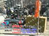 深圳植桩机厂家/小型植桩机的价格/防汛打桩机