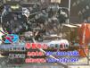 福建莆田供应防汛打桩机/帝智打桩机的最新价格/抢险专用设备-打桩机