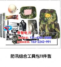 新乡防汛组合工具包厂家/帝智组合工具包6件套图片